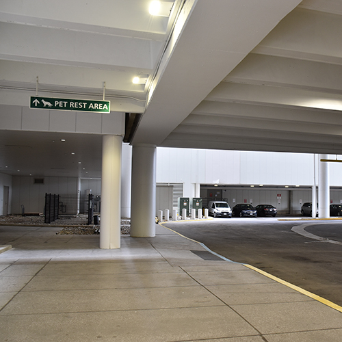 Travelling With A Pet Through John Glenn International Airport